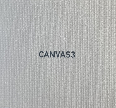 CANVAS3 - White canvas
